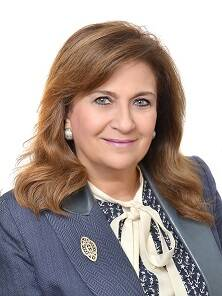 Dr. Sahar Attia, Professor of Architecture and Urban Design, Habitat UNI chairperson