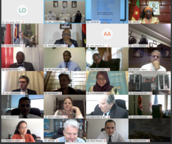 The first meeting of UN-Habitat Executive Board in 2020 took place virtually - Image