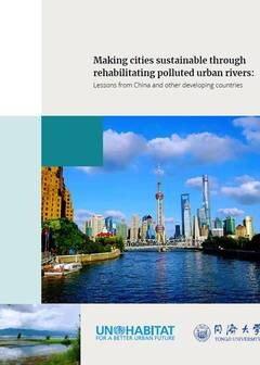 Making cities sustainable through rehabilitating polluted urban rivers: Lessons from China and other developing countries