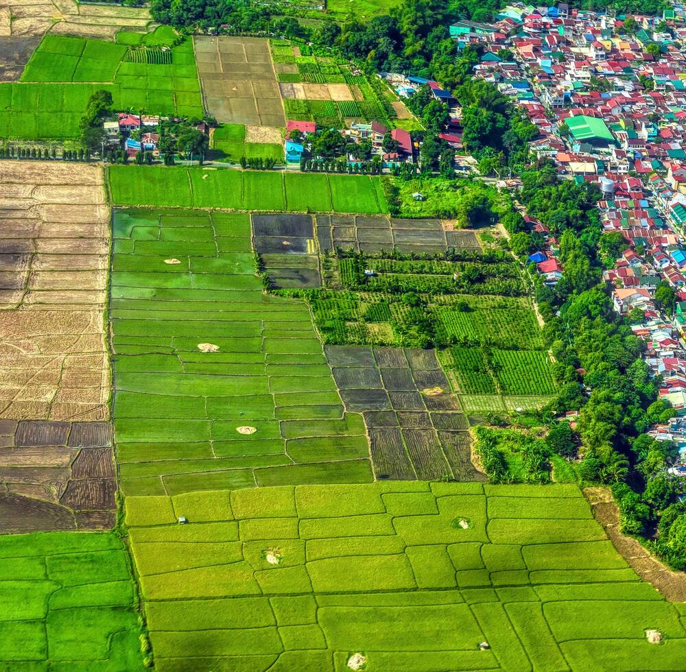 Green fields bordering a colourful town