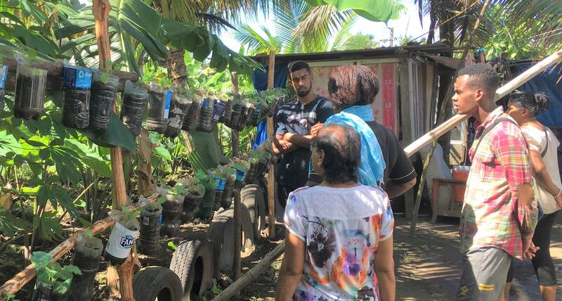 Urban farming and art help vulnerable people in Fiji during the COVID pandemic