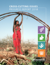 Cross-cutting Issues Progress Report 2018